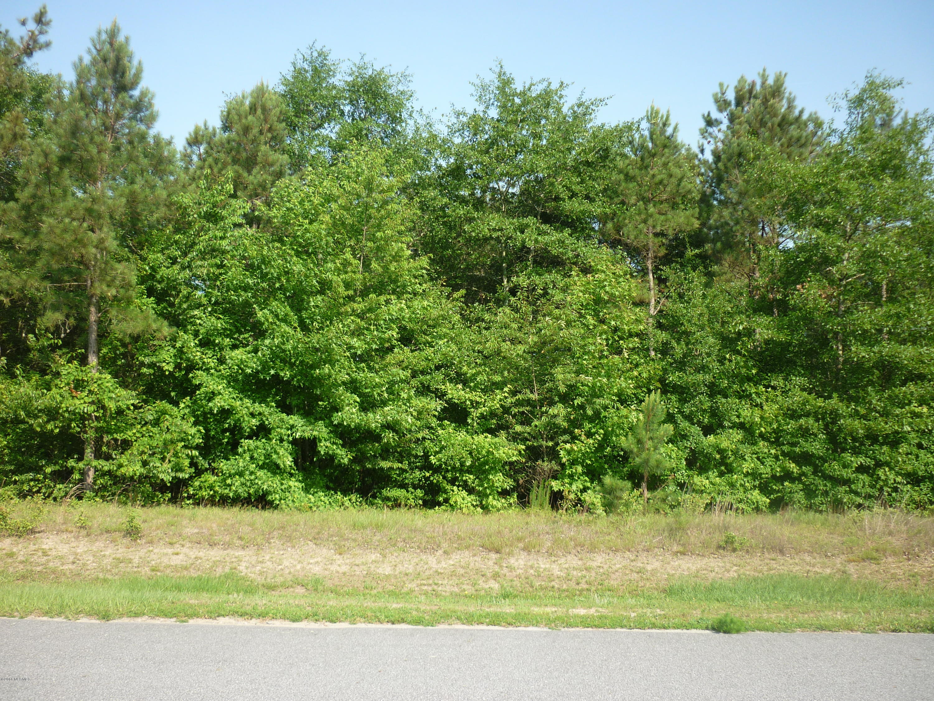 218 Deer Pointe Drive, Snow Hill, North Carolina 28580, ,Residential land,For sale,Deer Pointe,11200549