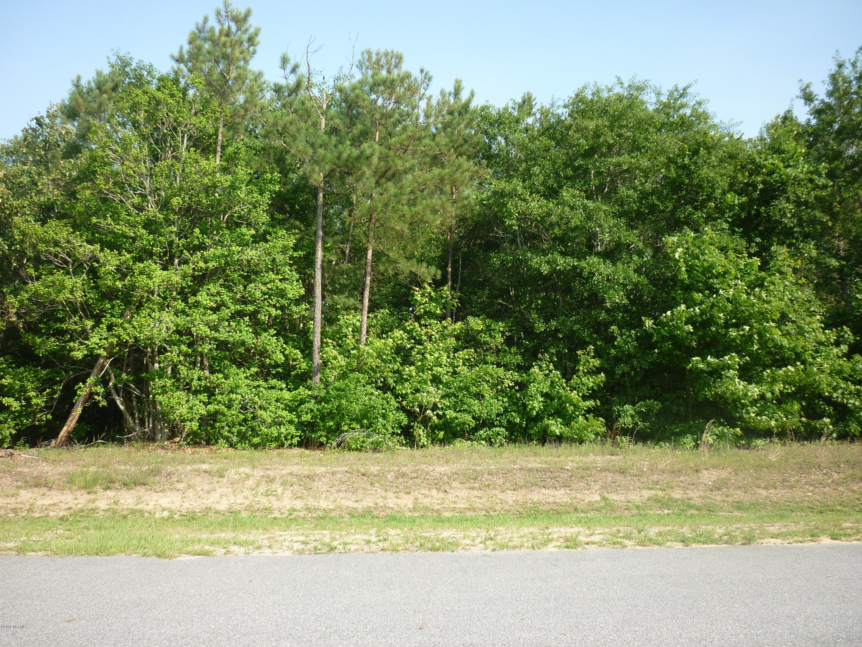 173 Deer Pointe Drive, Snow Hill, North Carolina 28580, ,Residential land,For sale,Deer Pointe,11200548