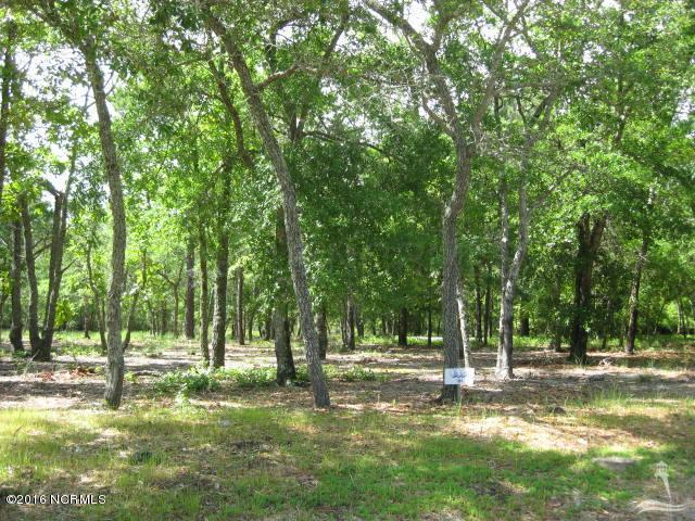 622 Loreauville Drive, Supply, North Carolina 28462, ,Residential land,For sale,Loreauville,100035832