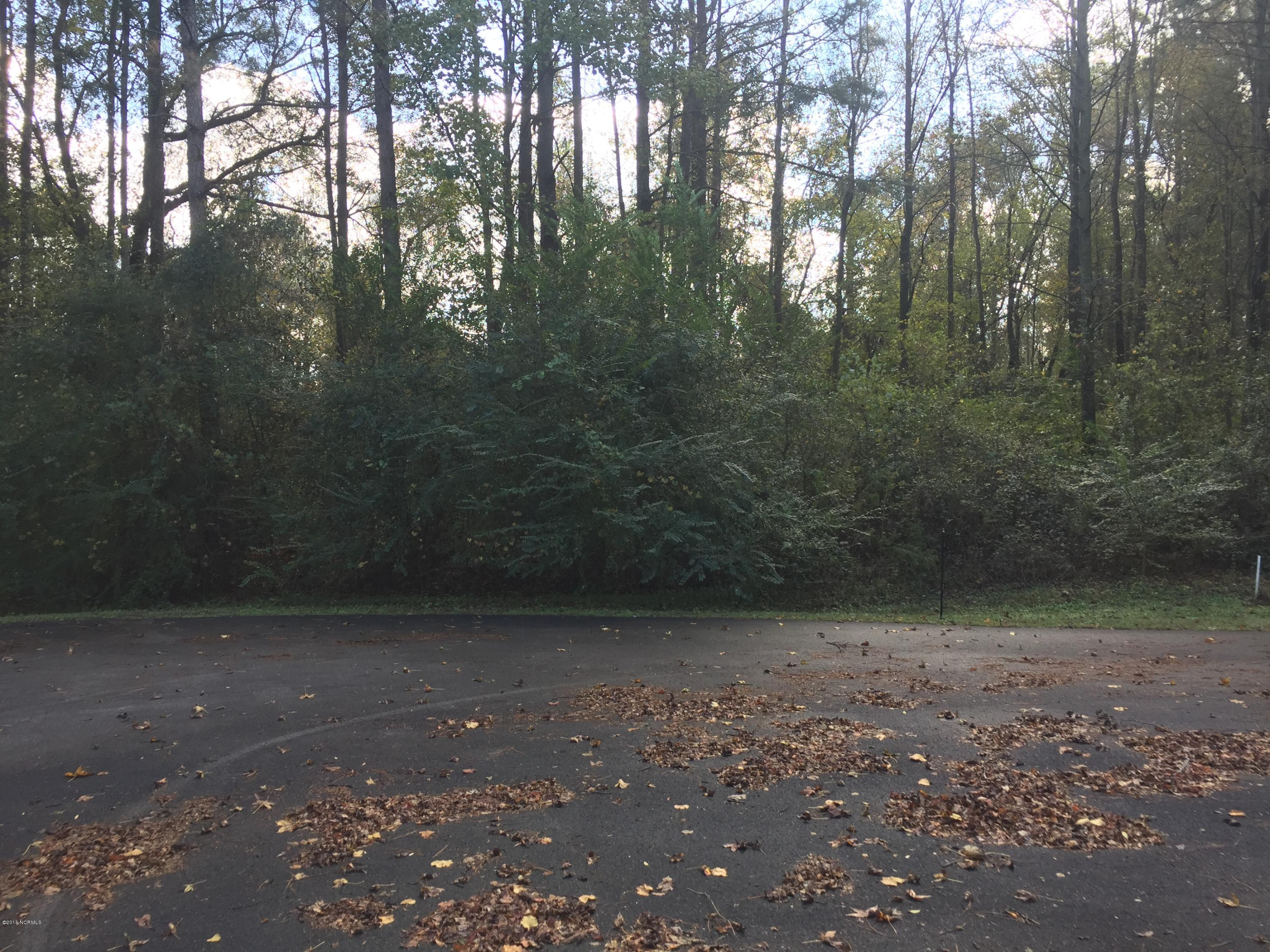 27 Walnut Run Drive, Deep Run, North Carolina 28525, ,Residential land,For sale,Walnut Run,100035929