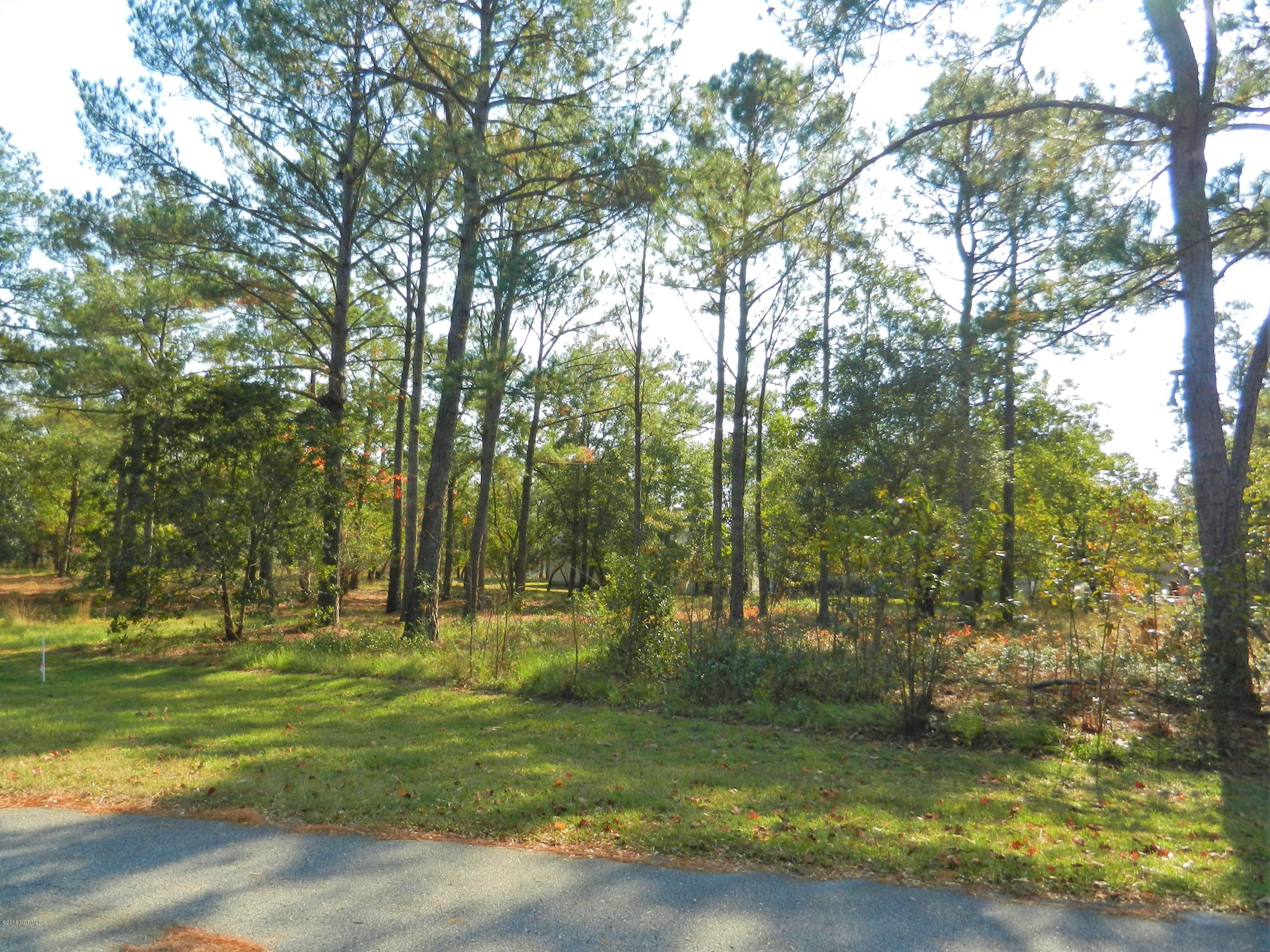 3055 Pine Hill Drive- Shallotte- North Carolina, ,Residential land,For sale,Pine Hill,100037345