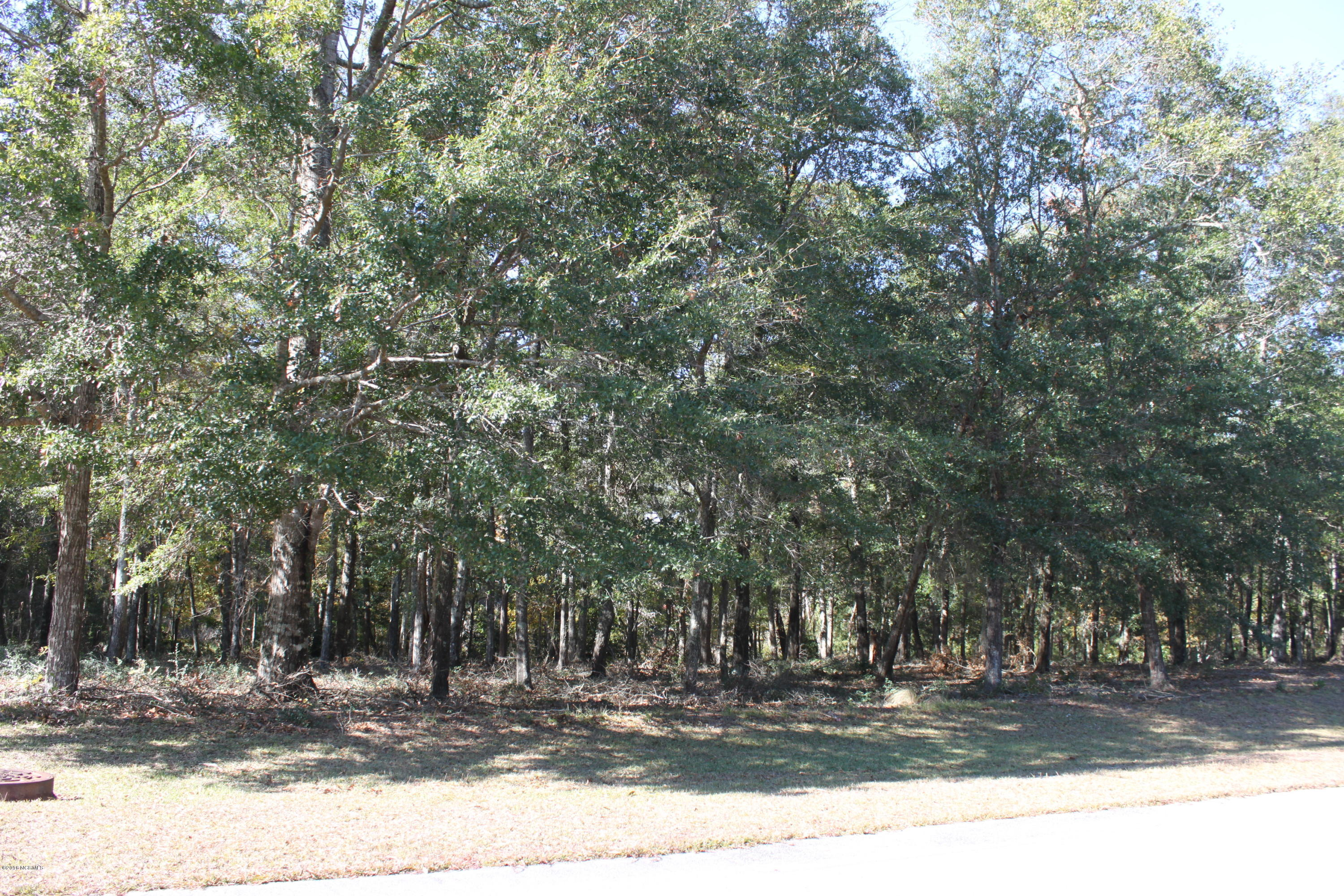 1927 Redfish Run, Supply, North Carolina, ,Residential land,For sale,Redfish,100037764