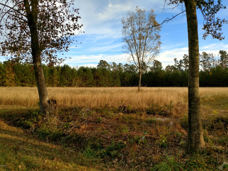 Carolina Plantations Real Estate - MLS Number: 100038301