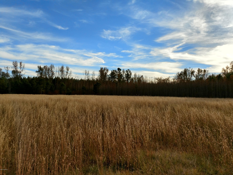Carolina Plantations Real Estate - MLS Number: 100038304