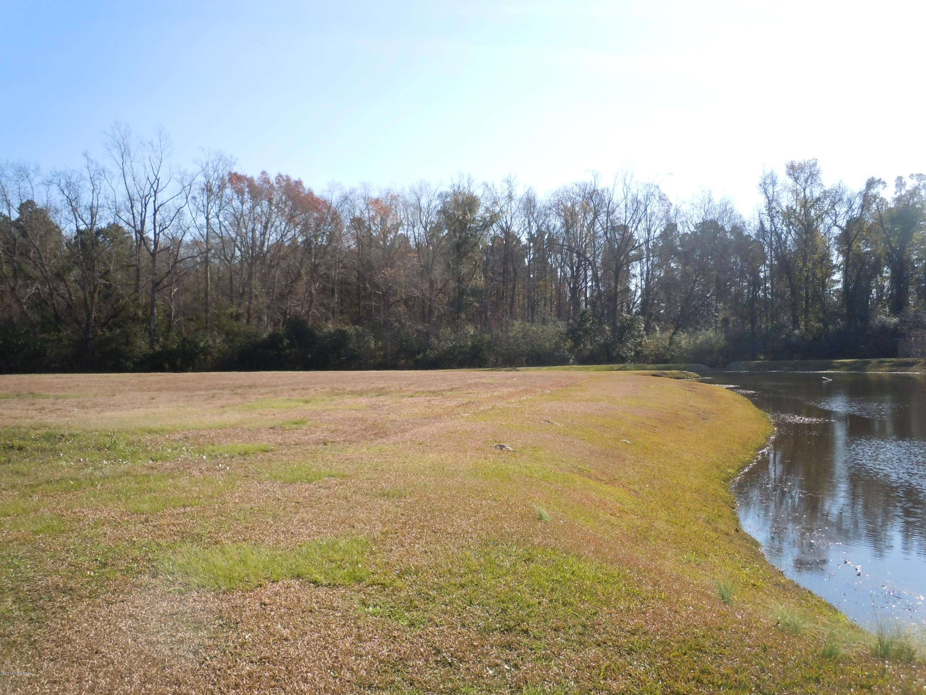 193 Waterfall Lane, Whiteville, North Carolina 28472, ,Residential land,For sale,Waterfall,100040312