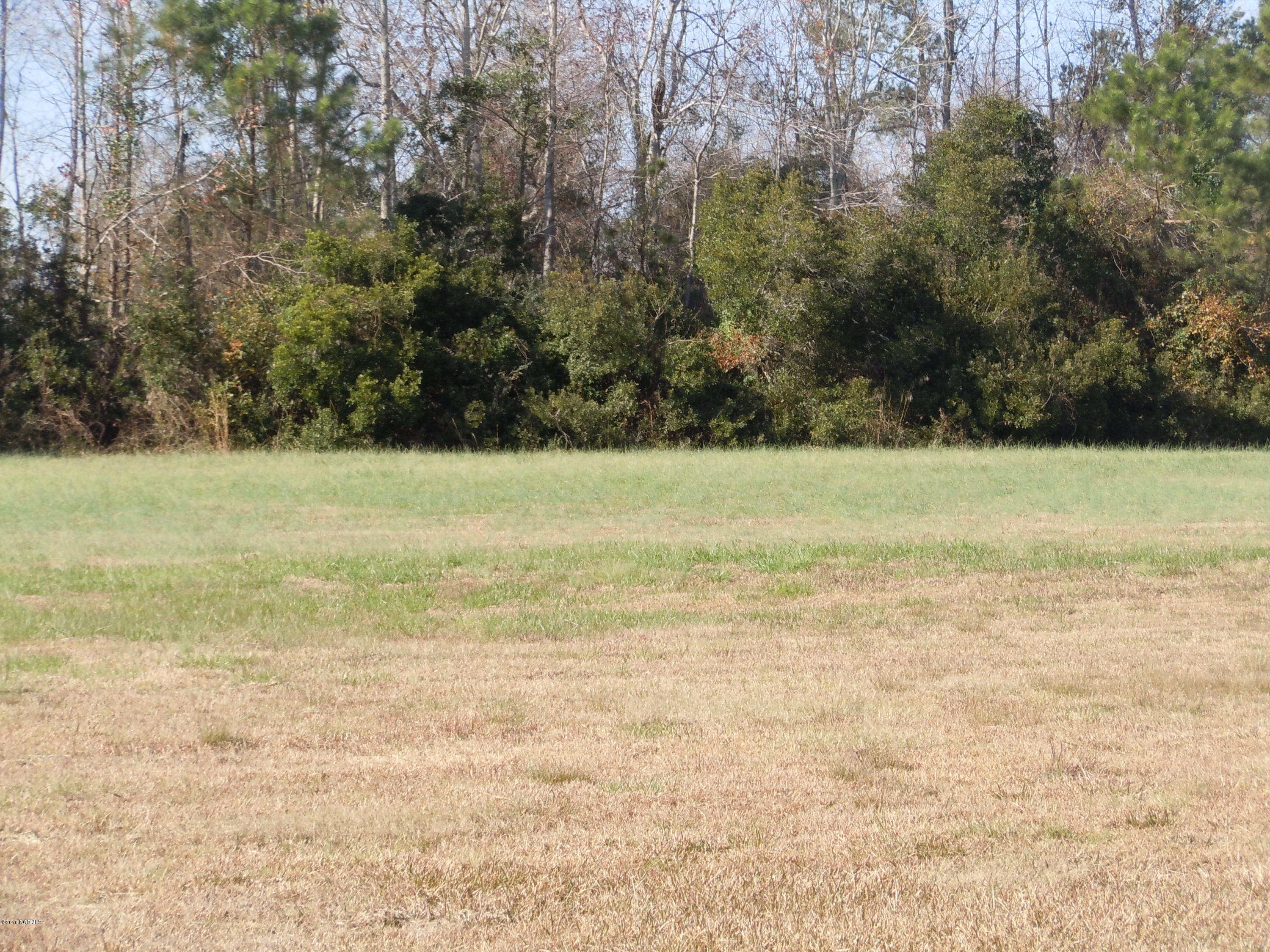 207 Waterfall Drive, Whiteville, North Carolina 28472, ,Residential land,For sale,Waterfall,100040745