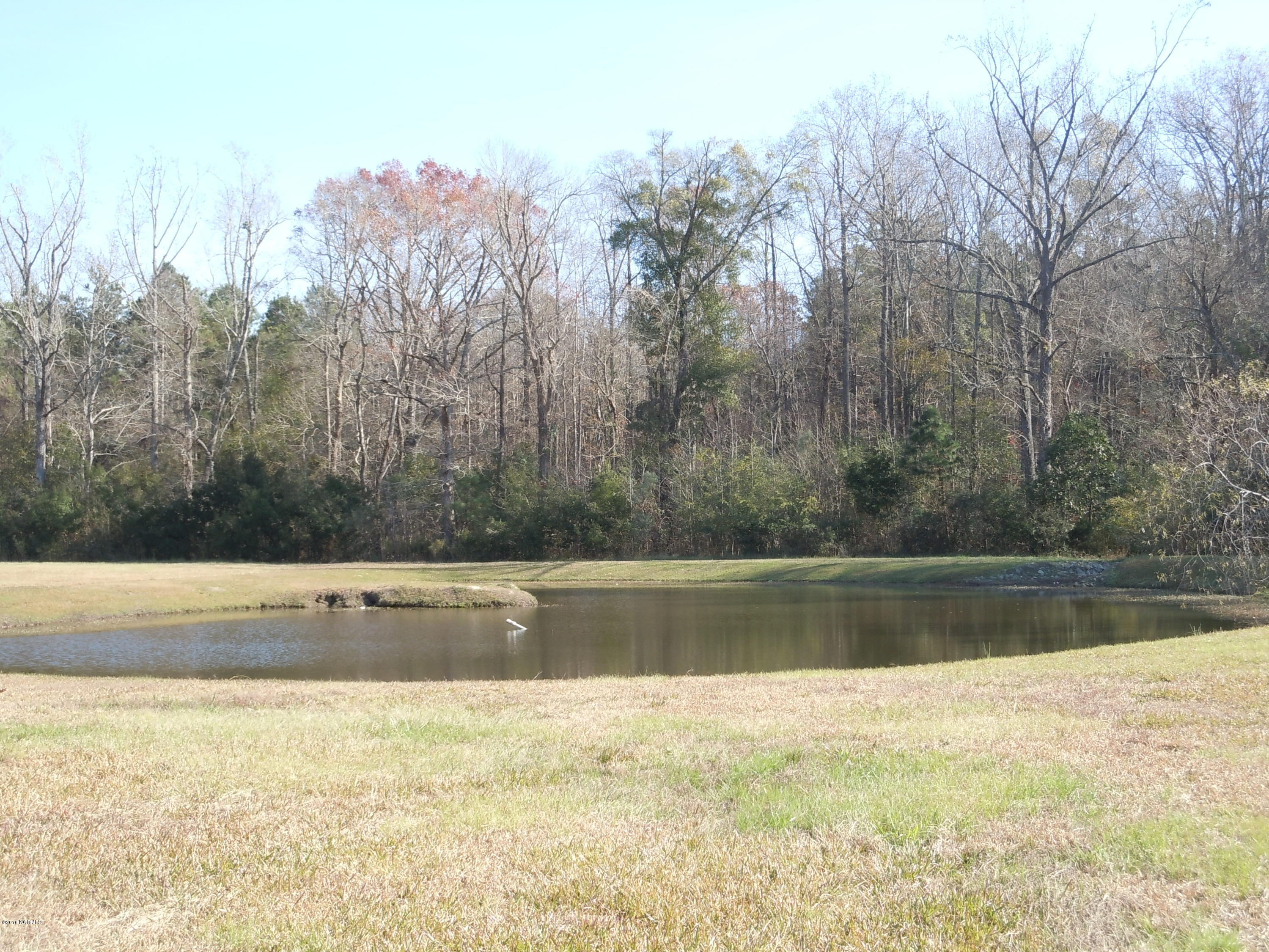 361 Waterfall Drive, Whiteville, North Carolina 28472, ,Residential land,For sale,Waterfall,100040750