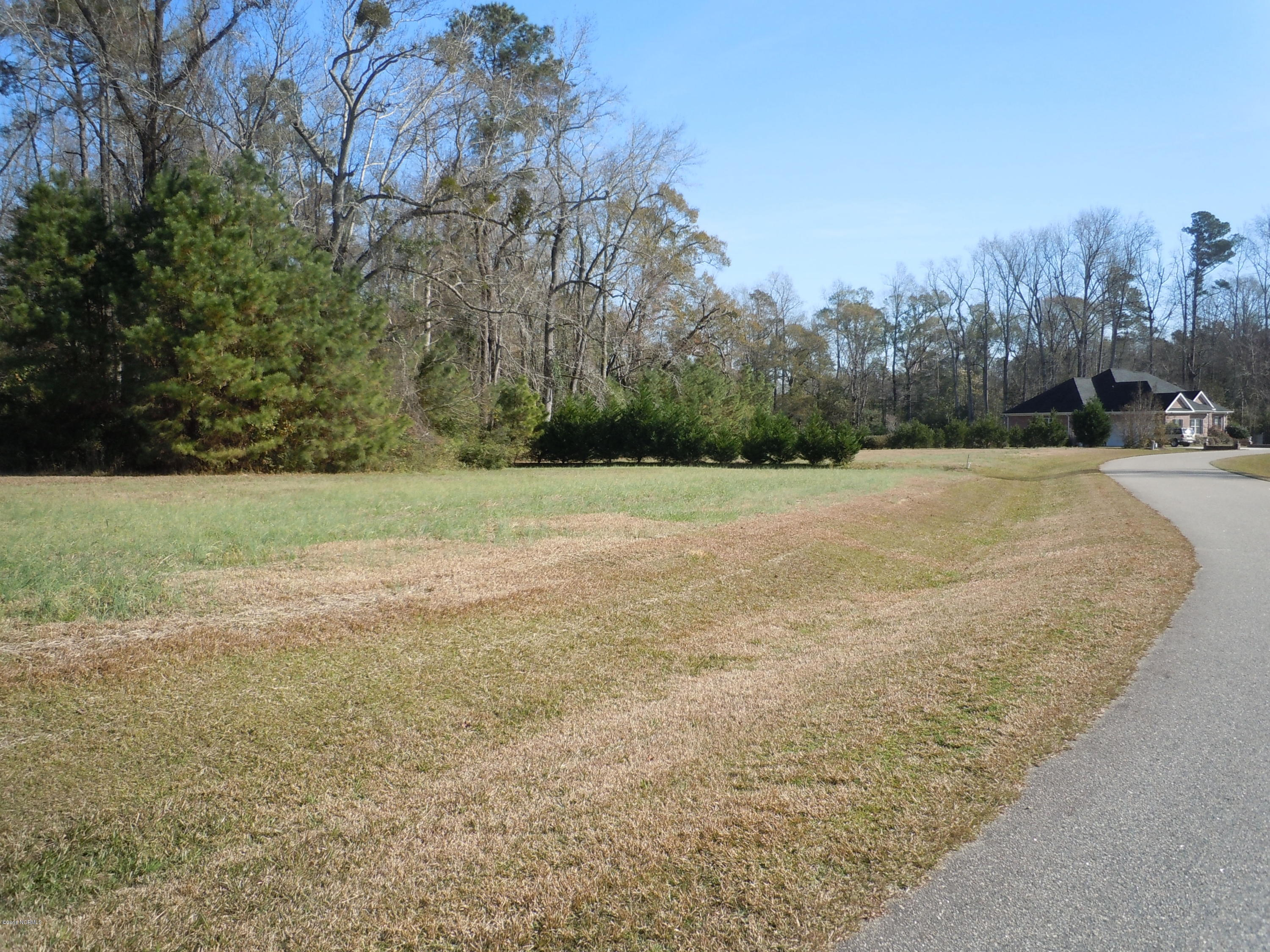 31 Misty Lane, Whiteville, North Carolina 28472, ,Residential land,For sale,Misty,100040816