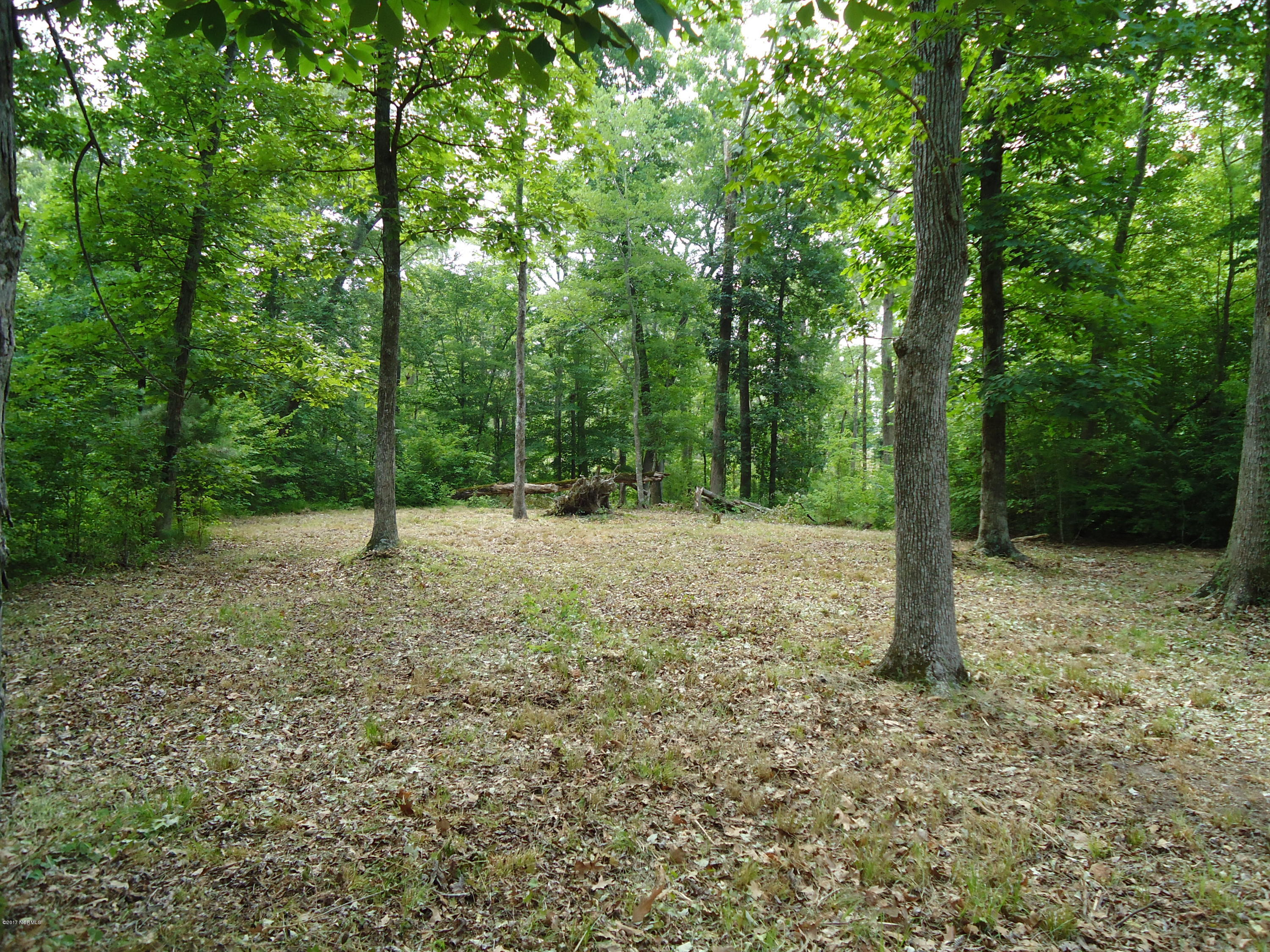 58 See View Lane, Hertford, North Carolina, ,Residential land,For sale,See View,100042624