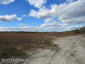 Land for Sale at 1356 Seven Creeks Highway Whiteville, North Carolina 28472 United States