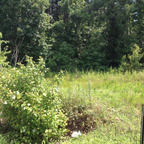 0 0 Nc Hghway 4, Rocky Mount, North Carolina 27804, ,For sale,0 Nc Hghway 4,95100427