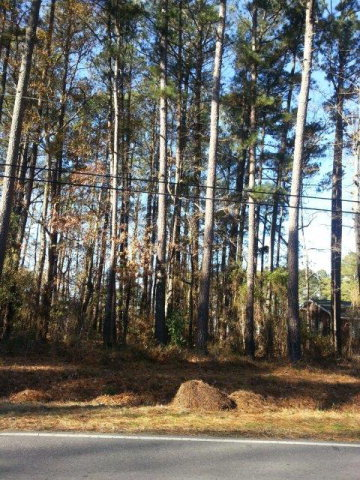 000 Springfield Road, Rocky Mount, North Carolina 27801, ,For sale,Springfield,95097440