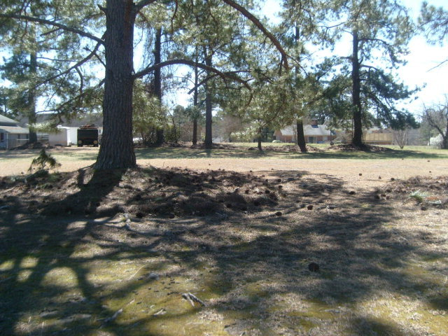 3429 Greenfield Drive, Rocky Mount, North Carolina 27804, ,Residential land,For sale,Greenfield,95097846