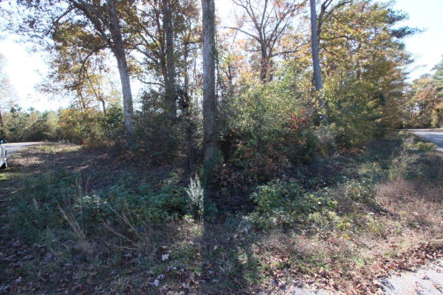Lot 18 Pine Needle Court, Tarboro, North Carolina 27886, ,Residential land,For sale,Pine Needle,95101048