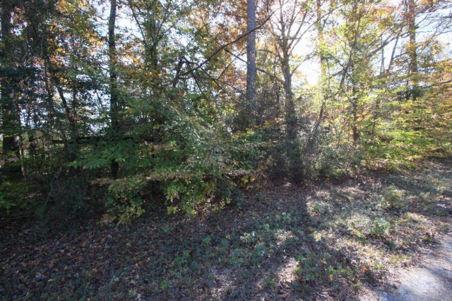 Lot 19 Pine Needle Court, Tarboro, North Carolina 27886, ,Residential land,For sale,Pine Needle,95101049