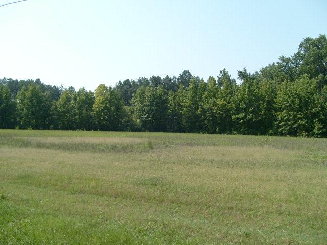 0 Nicodemus Mile Road, Rocky Mount, North Carolina 27804, ,Residential land,For sale,Nicodemus Mile,95091383