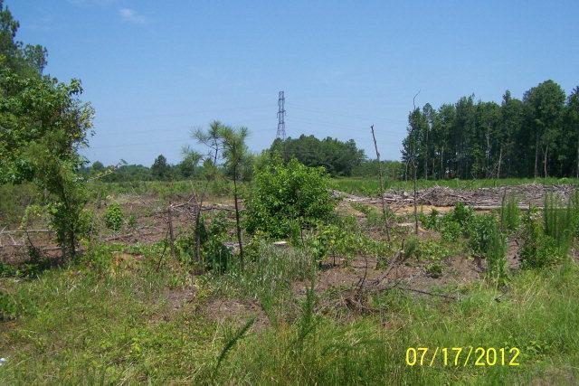 2026 Fenner Road, Rocky Mount, North Carolina 27804, ,Undeveloped,For sale,Fenner,95093987