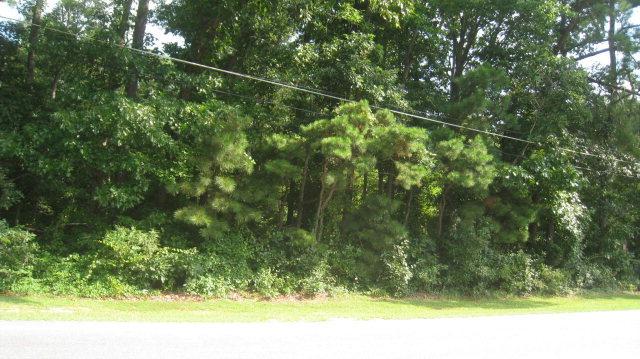 0 Us 64 Alt, Tarboro, North Carolina 27886, ,Residential land,For sale,Us 64 Alt,95096891