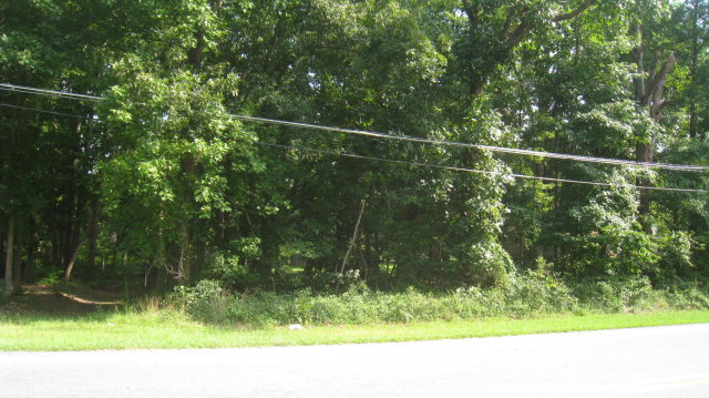 0 Us Highway 64, Tarboro, North Carolina 27886, ,Undeveloped,For sale,Us Highway 64,95096892