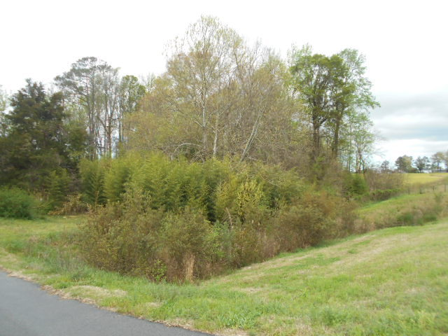LOT 74 Lot 74 Thomas A Betts Parkway, Rocky Mount, North Carolina 27804, ,Residential land,For sale,Lot 74 Thomas A Betts,95099797