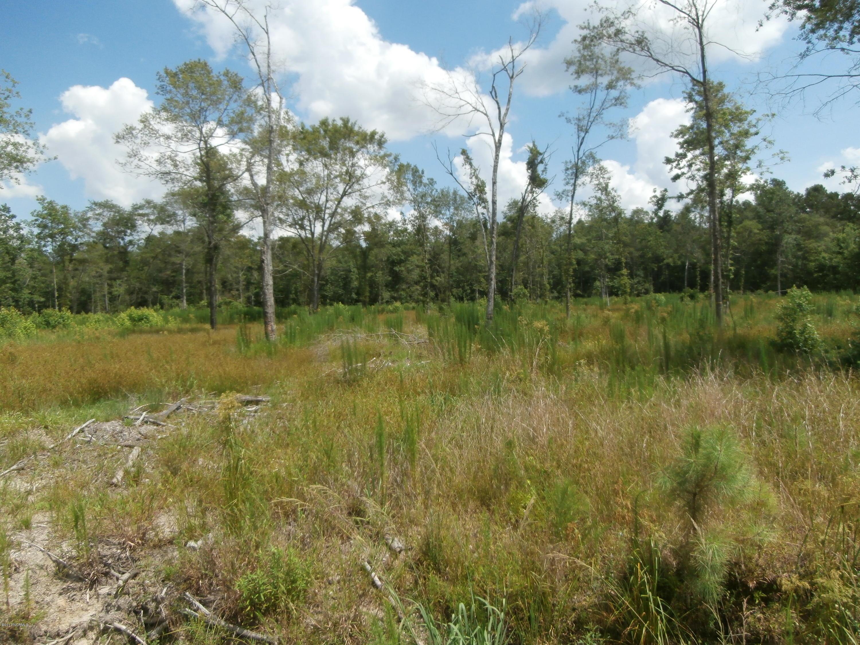 Lot #21 Buschs Avenue, Watha, North Carolina 28471, ,Residential land,For sale,Buschs,100045106