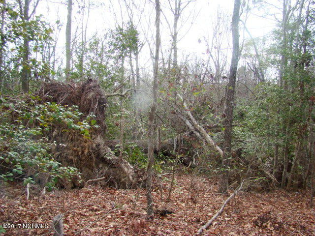 Lot 24 Evergreen Lane,Blounts Creek,North Carolina,Residential land,Evergreen,100048485