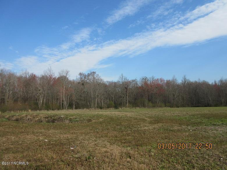 0 Us Hwy 117, Burgaw, North Carolina 28425, ,Retail,For sale,Us Hwy 117,30380723
