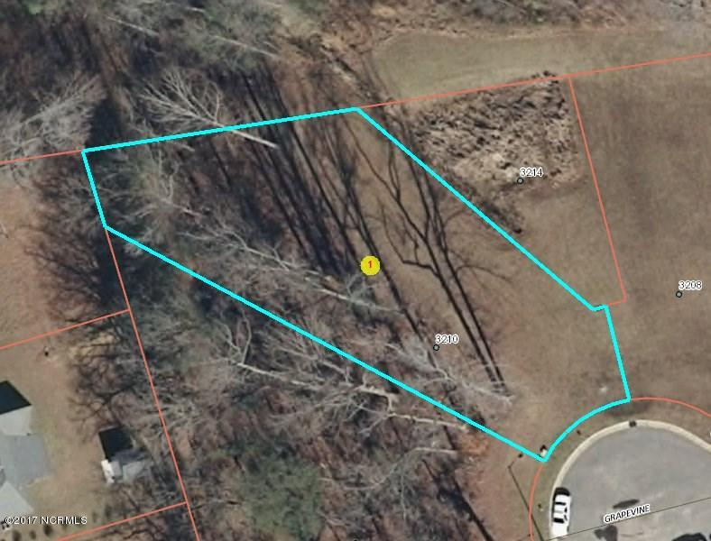 3210 Grapevine Court, Wilson, North Carolina, ,Residential land,For sale,Grapevine,100052109