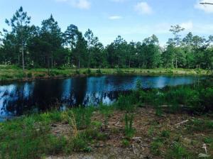 Land for Sale at 2760 Stone Chimney Road Supply, North Carolina 28462 United States