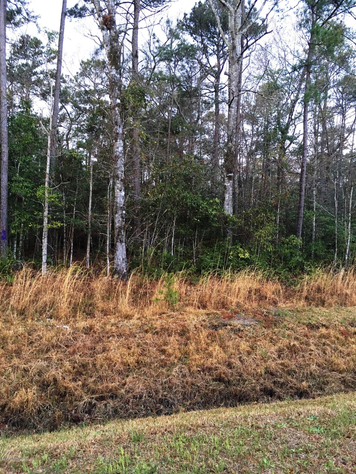 221 Becton Road, Havelock, North Carolina 28532, ,Residential land,For sale,Becton,100055178