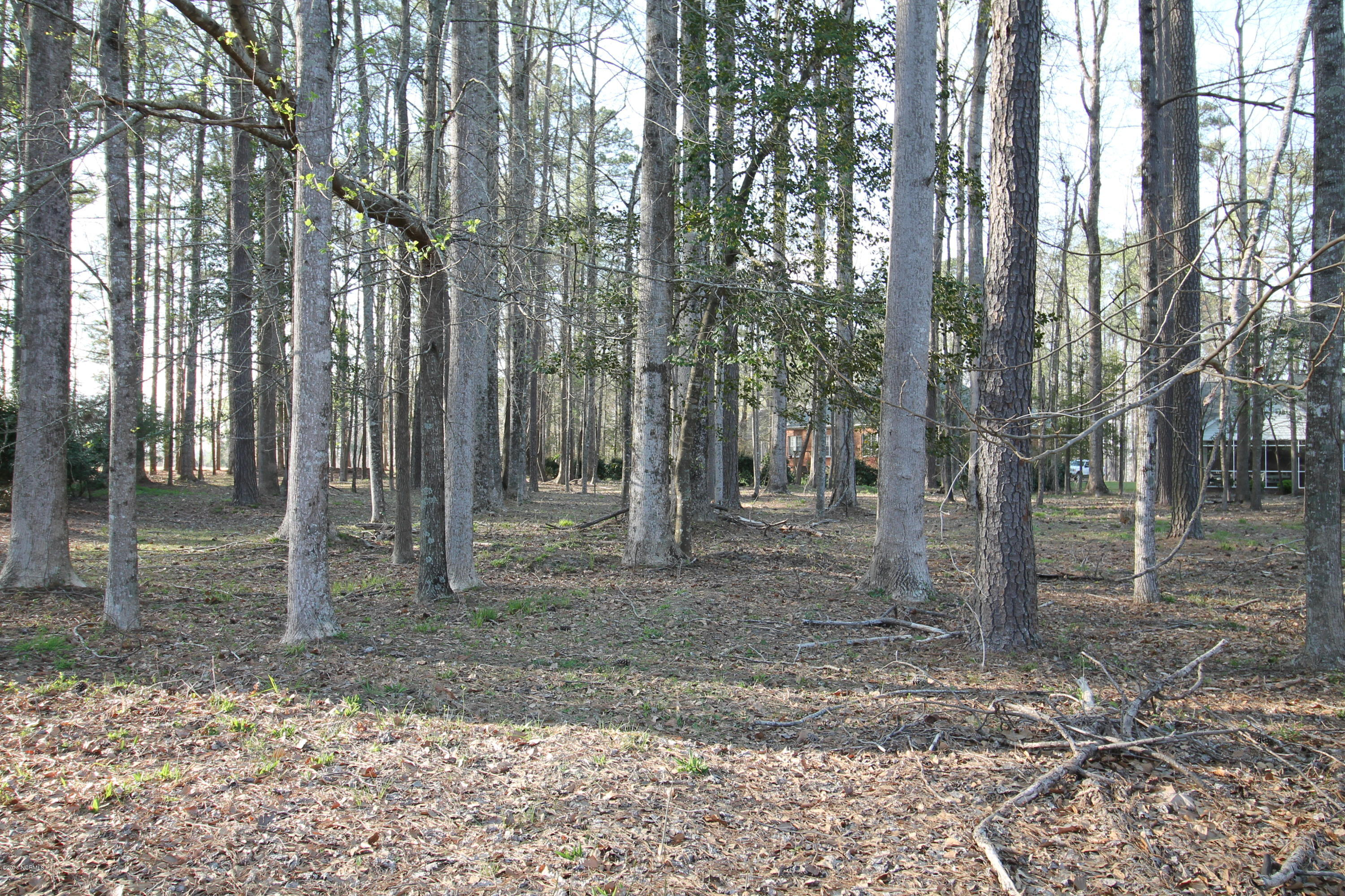 240 Tred Avon Court, Chocowinity, North Carolina, ,Residential land,For sale,Tred Avon,100056138