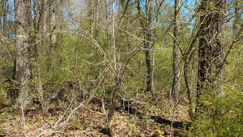 148 Farmington Drive, Richlands, North Carolina 28574, ,Residential land,For sale,Farmington,100056735