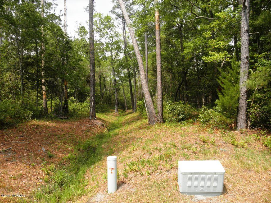 167 Longwood Drive, Stella, North Carolina 28582, ,Residential land,For sale,Longwood,100060224