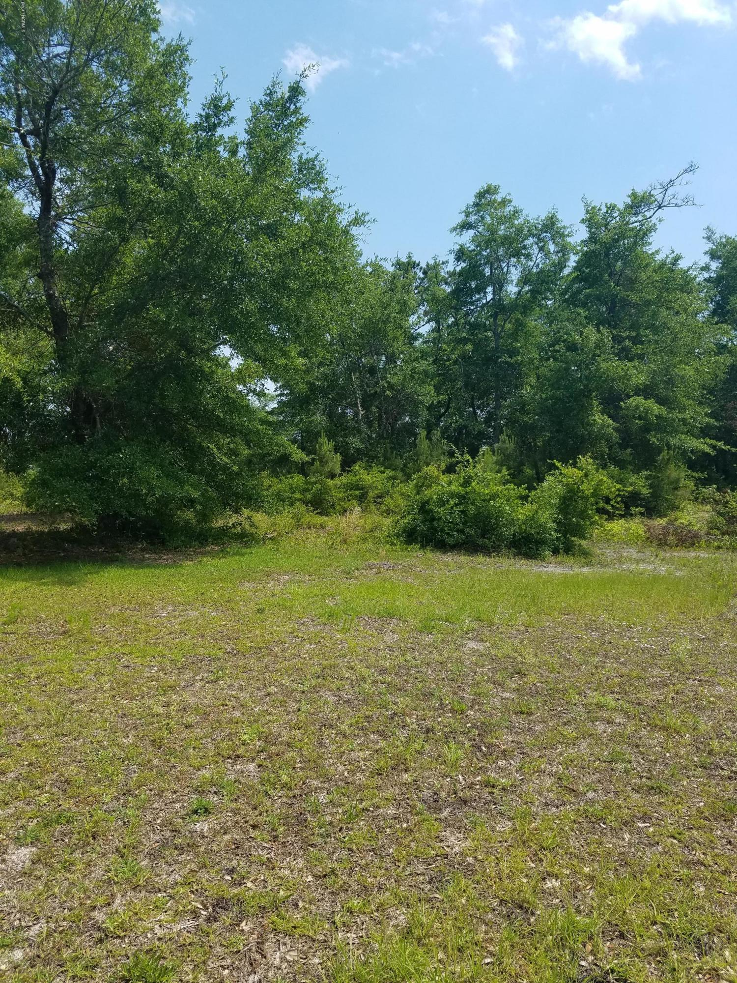 1846 Caisons Creek Drive, Supply, North Carolina 28462, ,Residential land,For sale,Caisons Creek,100062246