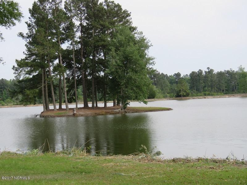 116 Marl Point Drive, Whiteville, North Carolina 28472, ,Residential land,For sale,Marl Point,100062508