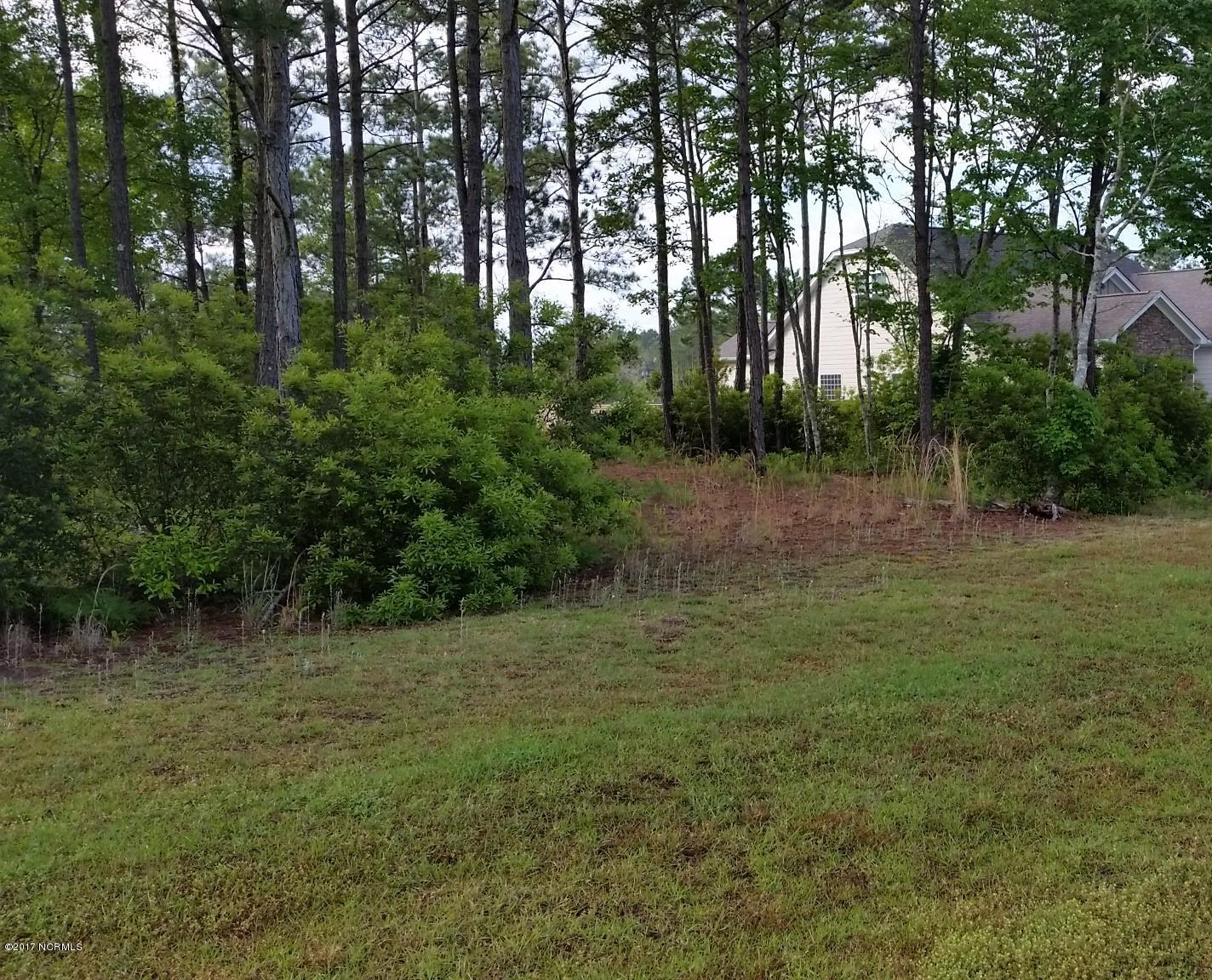 310 Dolphin View, Sneads Ferry, North Carolina 28460, ,Residential land,For sale,Dolphin,100066326