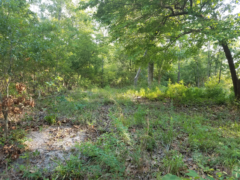1251 Fletcher Hewett Road, Shallotte, North Carolina 28470, ,Residential land,For sale,Fletcher Hewett,100066109