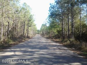 Land for Sale at Tbd Us Hwy 17 Hampstead, North Carolina 28443 United States