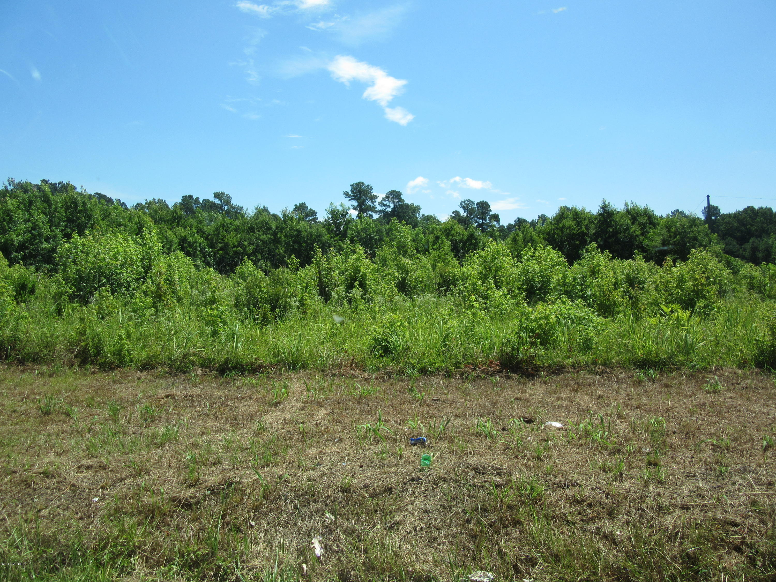 Carolina Plantations Real Estate - MLS Number: 100072001
