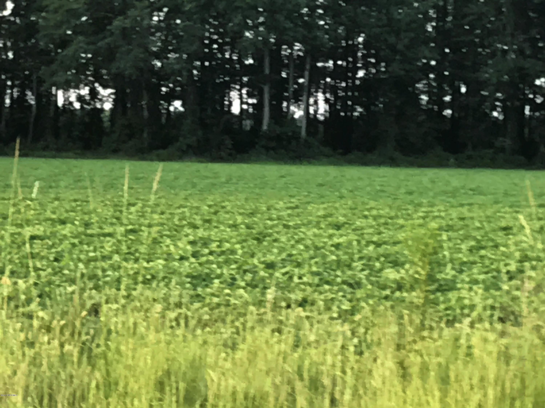 0 Ten Mile Fork Road, Trenton, North Carolina 28585, ,Residential land,For sale,Ten Mile Fork,100072578