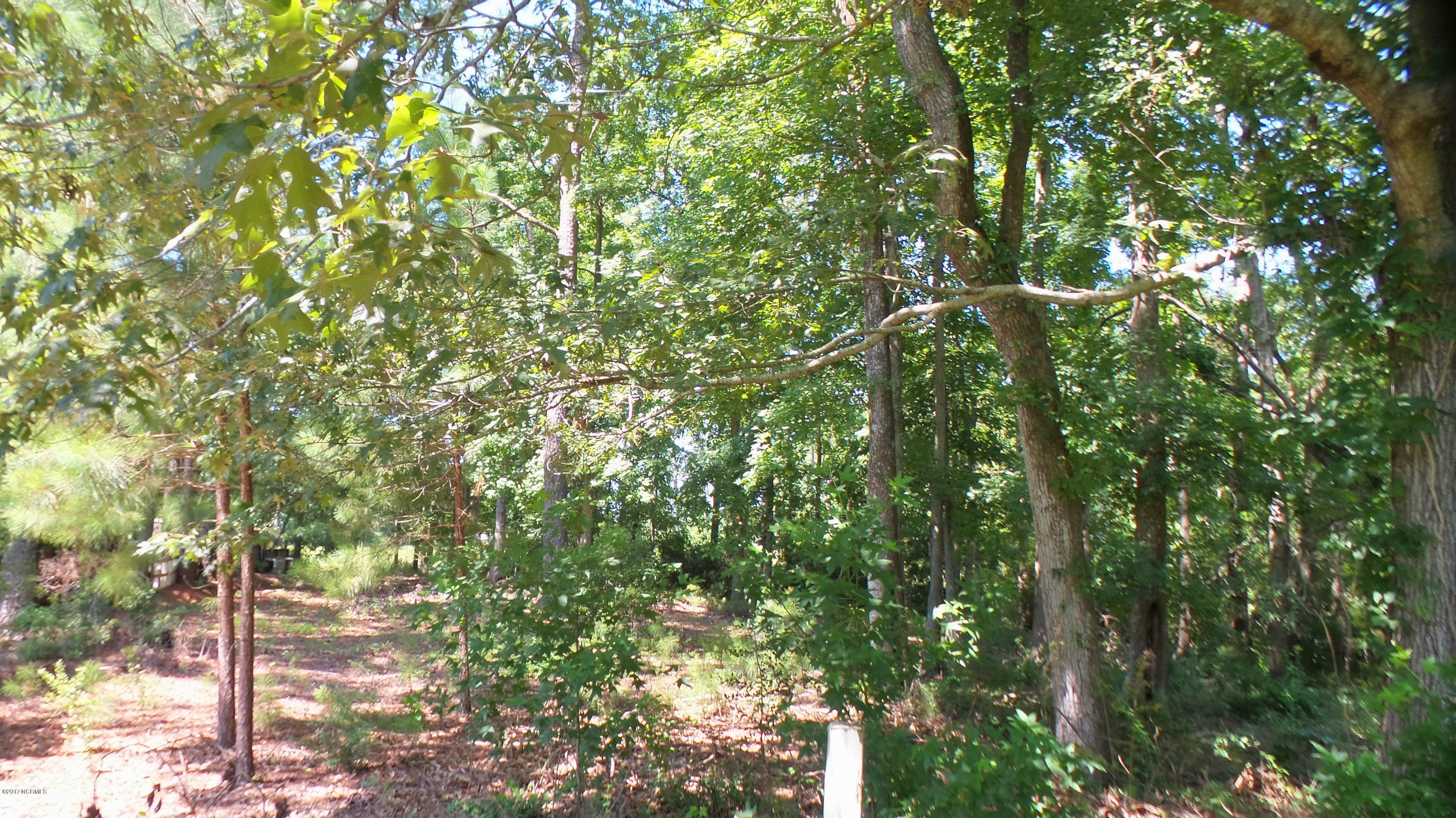 23998 Nc Hwy 55, Oriental, North Carolina 28571, ,Residential land,For sale,Nc Hwy 55,100073734