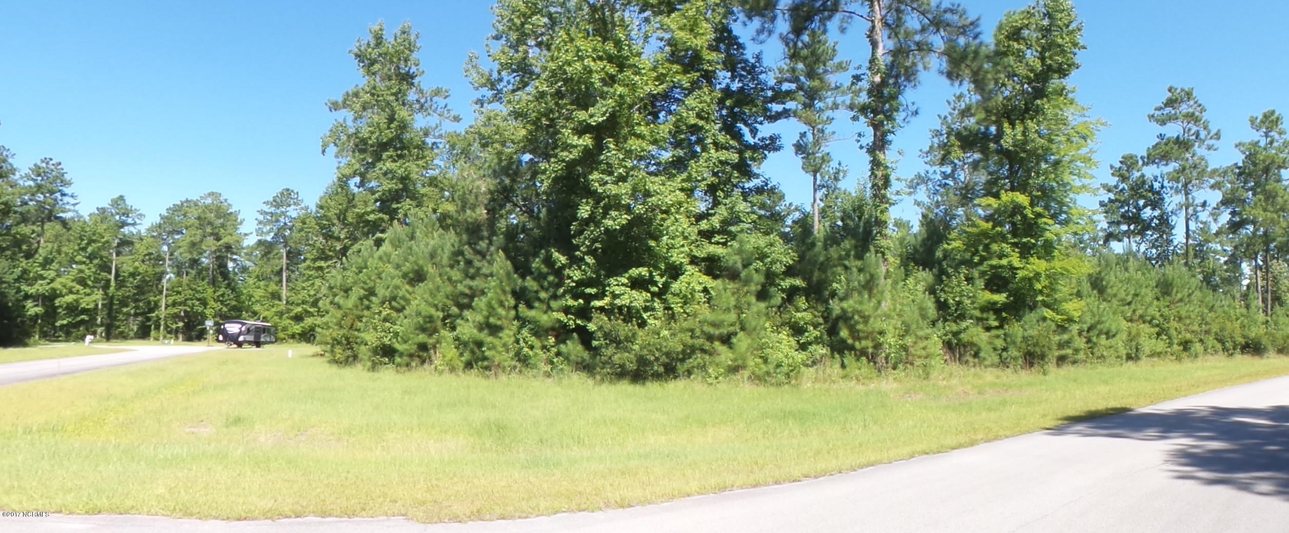 196 Shady Creek Road, Merritt, North Carolina 28556, ,Residential land,For sale,Shady Creek,100075000