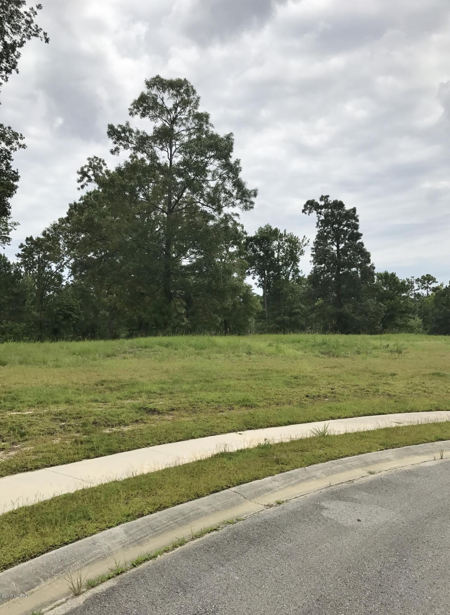 515 Bluff View Lane, Swansboro, North Carolina 28584, ,Residential land,For sale,Bluff View,100075103