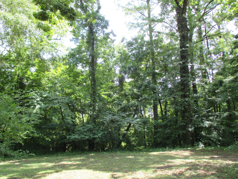 2816 Little Gem Circle, Winterville, North Carolina 28590, ,Residential land,For sale,Little Gem,100076208