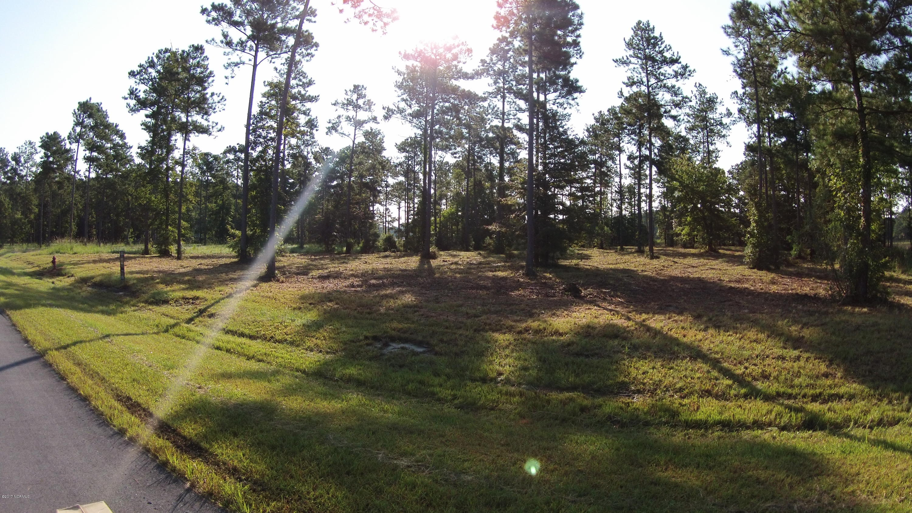 194 Waters Edge Lane, Oriental, North Carolina 28571, ,Residential land,For sale,Waters Edge,100073526