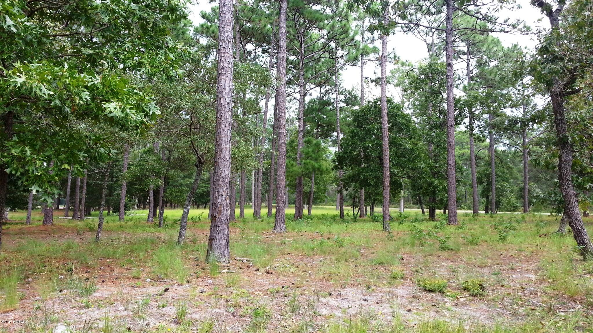 1 Loblolly Drive, Shallotte, North Carolina, ,Residential land,For sale,Loblolly,100081766