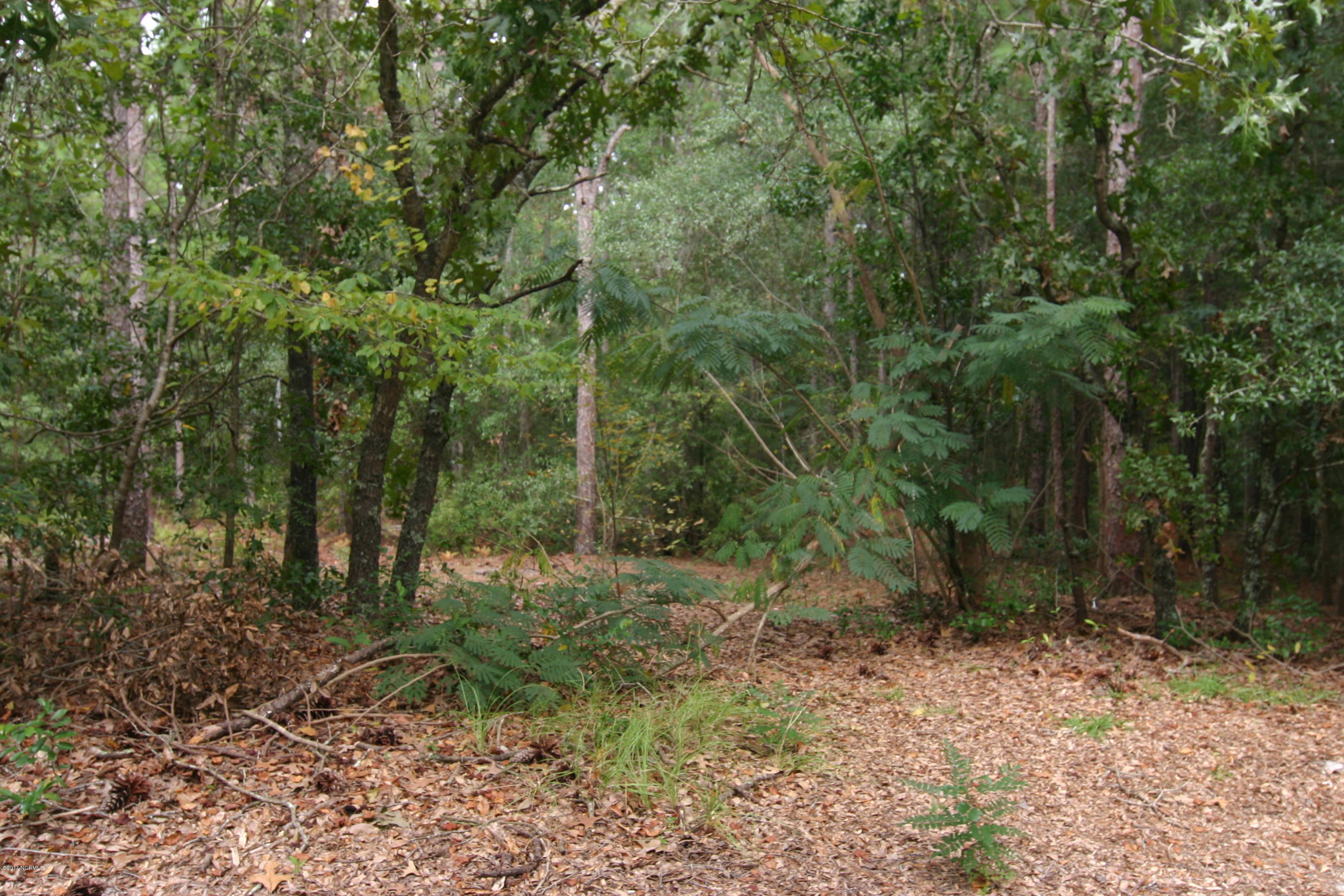 2323 Blythe Road, Wilmington, North Carolina 28403, ,Residential land,For sale,Blythe,100081711