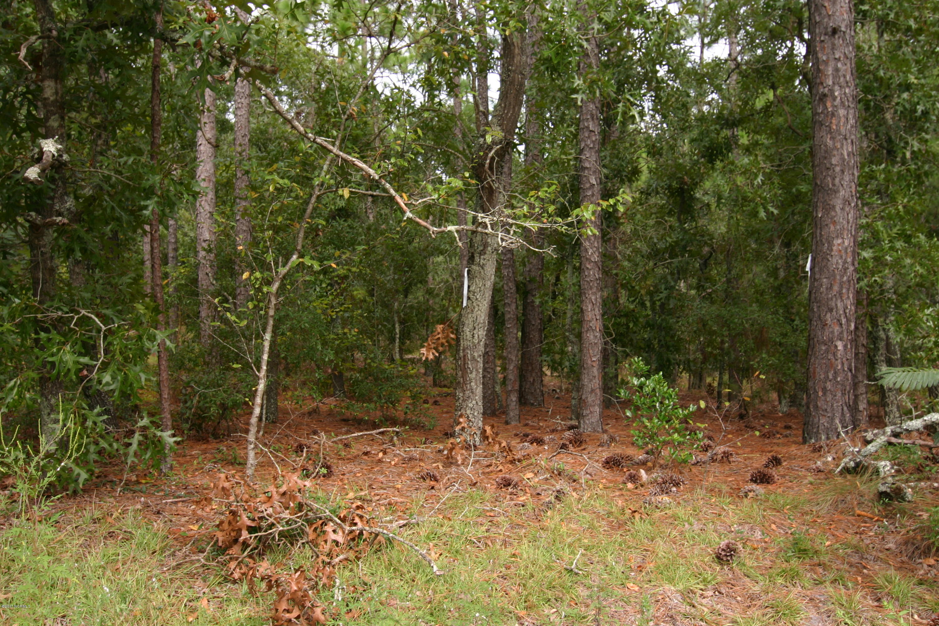 2319 Blythe Road, Wilmington, North Carolina 28403, ,Residential land,For sale,Blythe,100081716