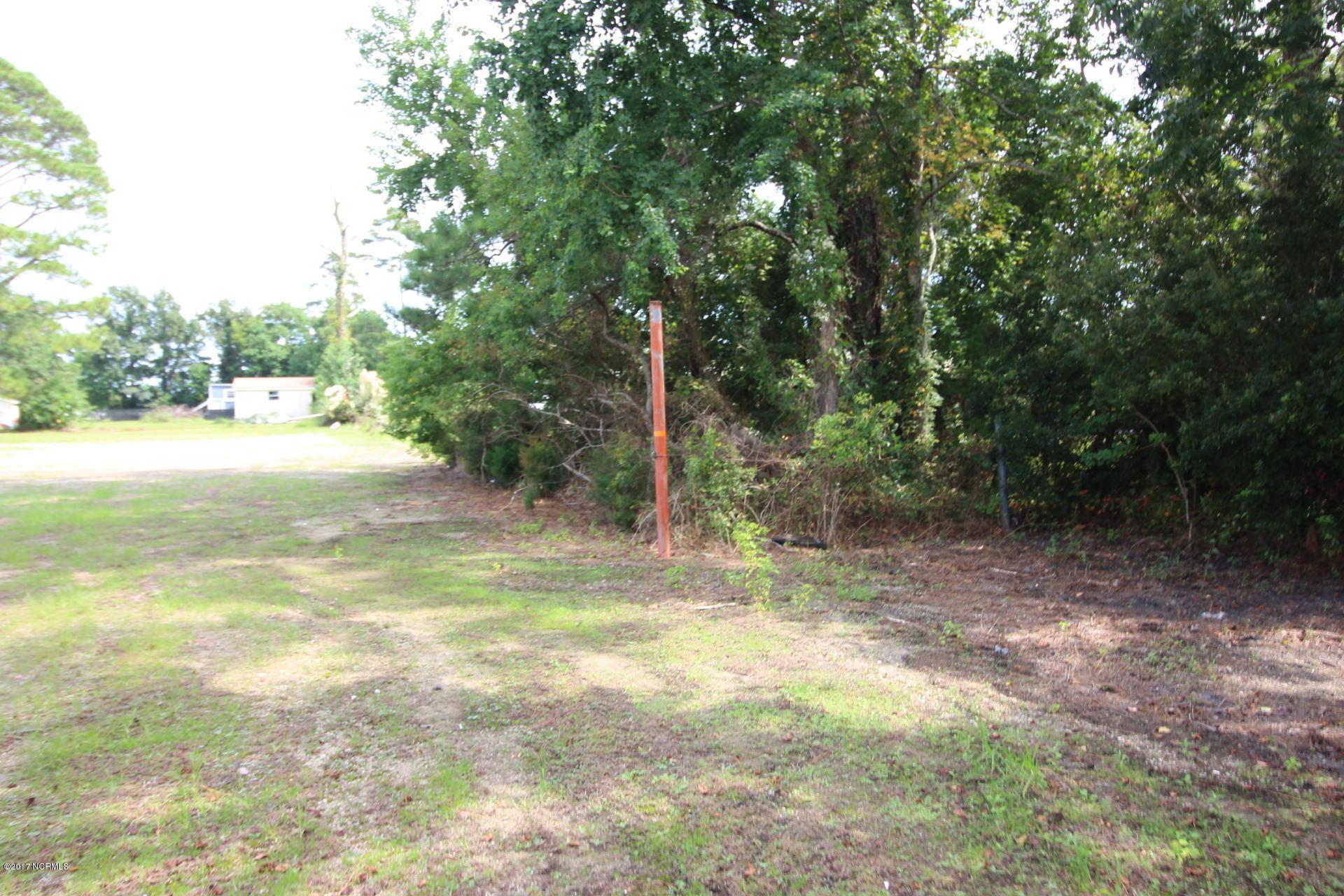 165 Community Road, Davis, North Carolina 28524, ,Residential land,For sale,Community,100082615