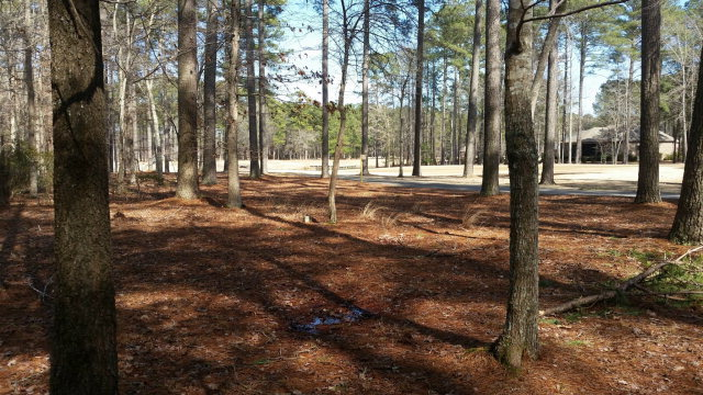 74 Cape Fear Drive, Chocowinity, North Carolina 27817, ,Residential land,For sale,Cape Fear,100083234